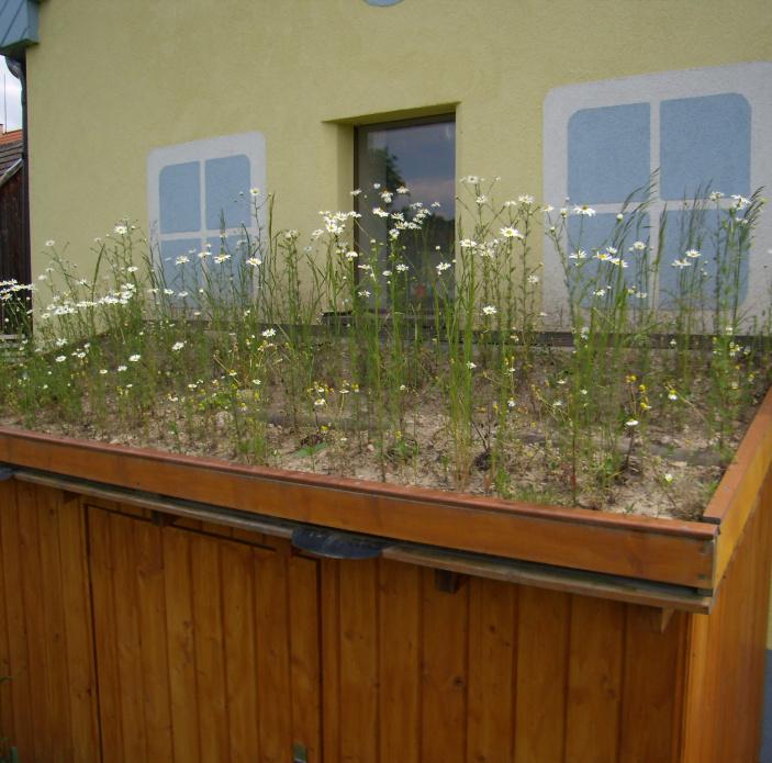Zelená pultová střecha