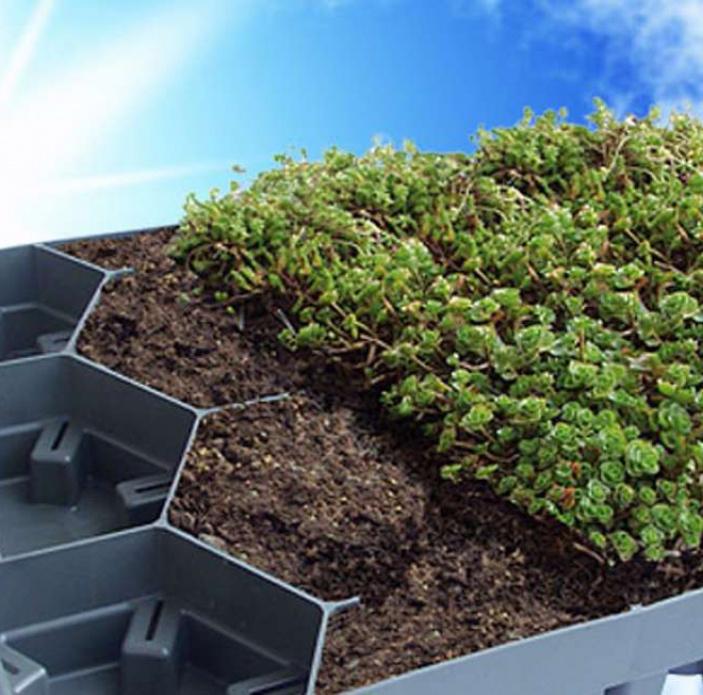Zelená střecha v krabičkách
